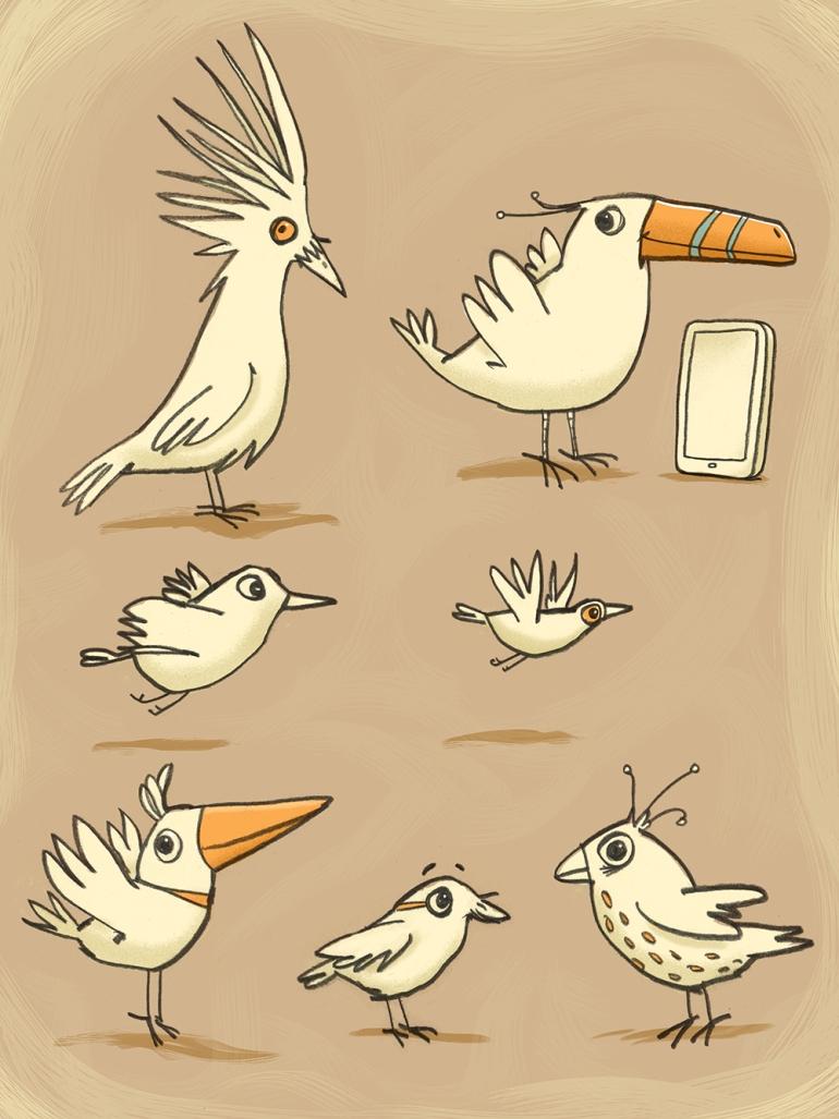 birds-new4.jpg